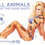 PETA ad featuring Pamela Anderson that was banned by the city of Montreal in 2010 for being sexist.
